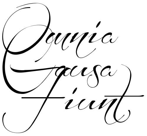 Omnia Causa Fuint